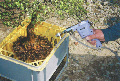 根洗いは盆栽・水石用スプレーガン使用例