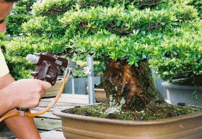北日本製作所の盆栽・水石用スプレーガン製品
